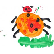 Use watercolor to paint a beetle